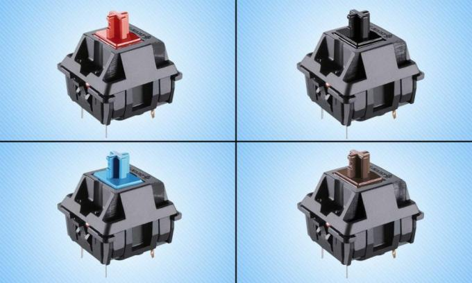 MX switches from top-left clockwise: Red, Black, Brown and Blue