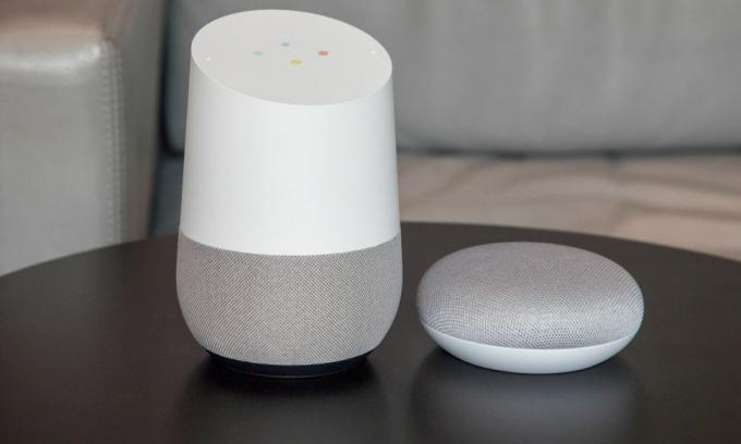 Google Home ve Google Home Mini.